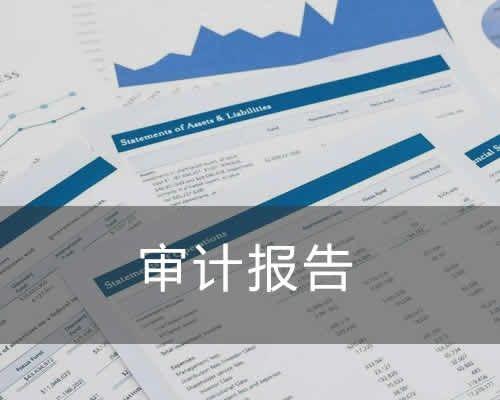 福州税务审计